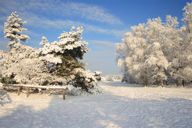sneeuw 4 (Small)